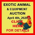 Exotic / Alternative Livestock